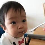 離乳食  ゴックン期  食べさせ方(前期6か月/あおいママさん):お口の動きを観察して2回食へ