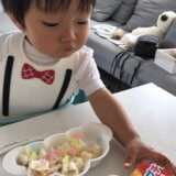離乳食 完了期 (1歳/あおいママさん):味覚の発達