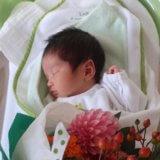 1~3か月ごろ:赤ちゃんの様子・育児のポイント・トラブル対策・季節の過ごし方